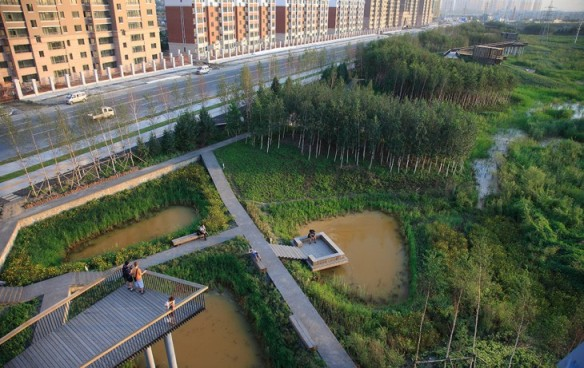 Qunli_National_Urban_Wetland-by-Turenscape-landscape_architecture-02-730x461